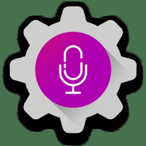 Auto Voice