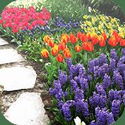 Ideas de diseño de jardines, aplicaciones de jardinería para Android
