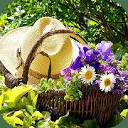 Consejos de jardinería de bricolaje