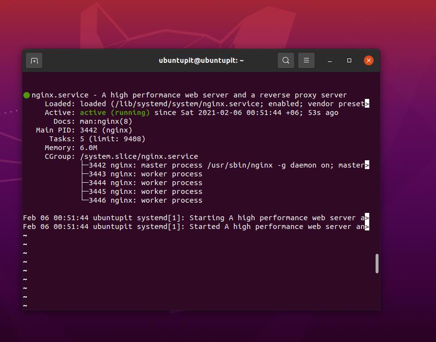 Estado del servidor Nginx