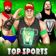 Pro Wrestling Stars